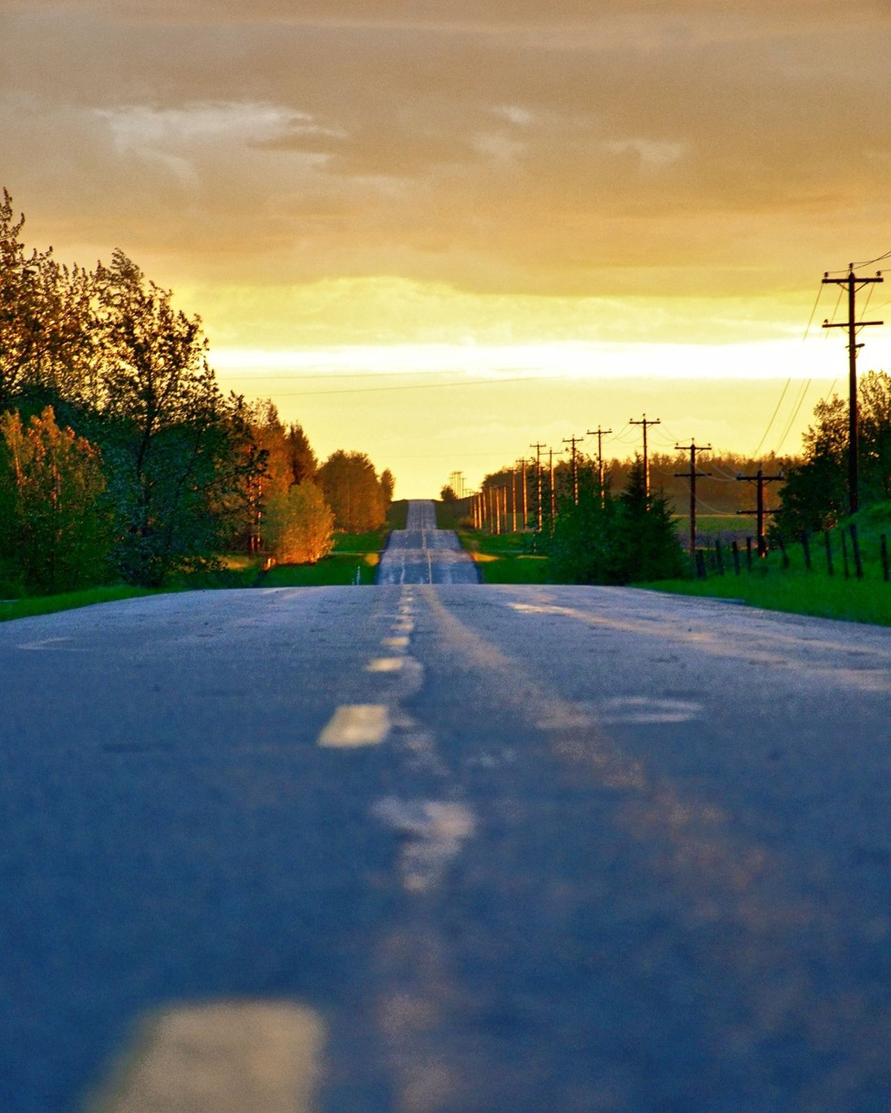 Road The Way Forward Sunset Tree Rural Scene Landscape Street Outdoors Cloud - Sky Scenics Nature Autumn No People Sky Beauty In Nature Summer Backgrounds Day Tree Area Alberta Canada Nikonphotography Beauty Nikon Selective Focus Peacful