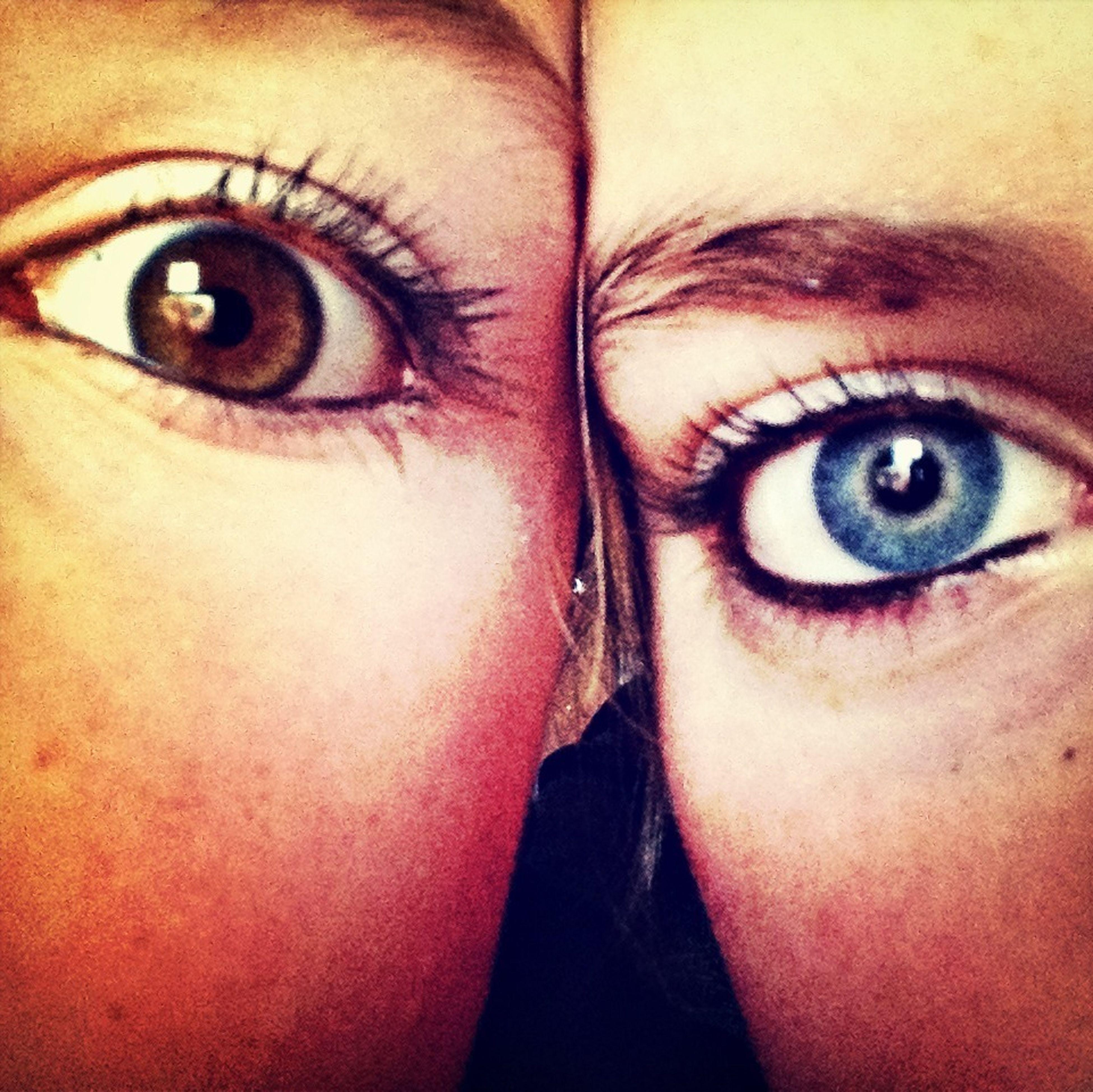 close-up, human eye, looking at camera, portrait, part of, eyelash, human face, eyesight, extreme close up, indoors, lifestyles, human skin, extreme close-up, sensory perception, headshot, full frame, iris - eye