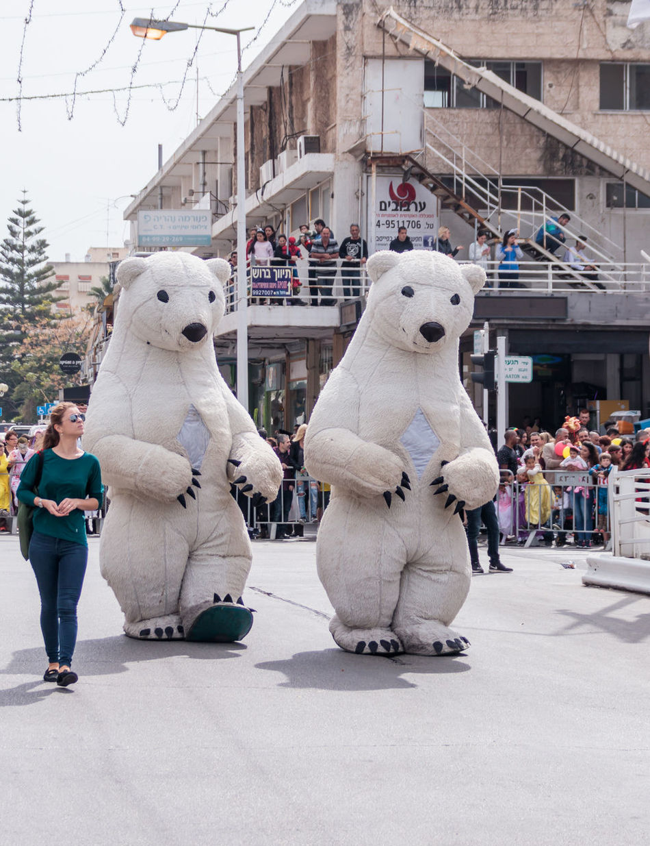 """Nahariyya, Israel, March 10, 2017 : Participants in the traditional annual carnival parade """"Adloyada"""" dressed in the big suit of white bears going near the viewers in Nahariyya, Israel Adloyada Adult Beauty Carnival Celebration Colorful Costume Culture Day Decoration Dressed Entertainment Festival Fun Happy Israel Masquerade Nahariyya Outdoors Parade Party People Style Traditional Travel"""