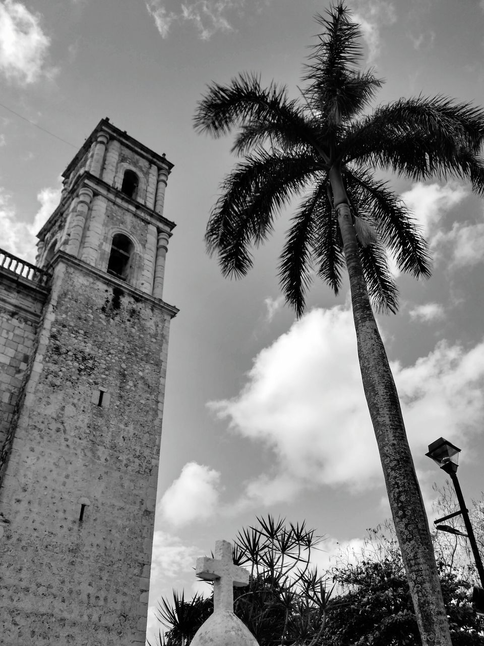 low angle view, sky, palm tree, tree, history, religion, day, architecture, outdoors, no people, built structure, place of worship, bell tower