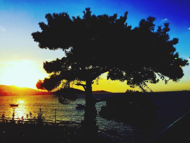 Seascape Sunset Seaview Nature Island Island Life Heybeliada Halki Prinkipo Burgazada Sky Sea Calm Tree IPhoneography Mobilephotography Mobile Photography Showcase: September Tranquil Scene