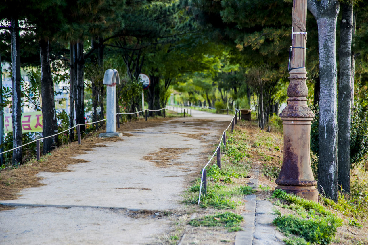 Absence Anyangchun Bench Composition Day Empty Footpath Grass Historic Leading Narrow No People Outdoors Park Park - Man Made Space Perspective Shadow Summer Sunny The Way Forward Trail Tree Walk This Way Wood Wooden