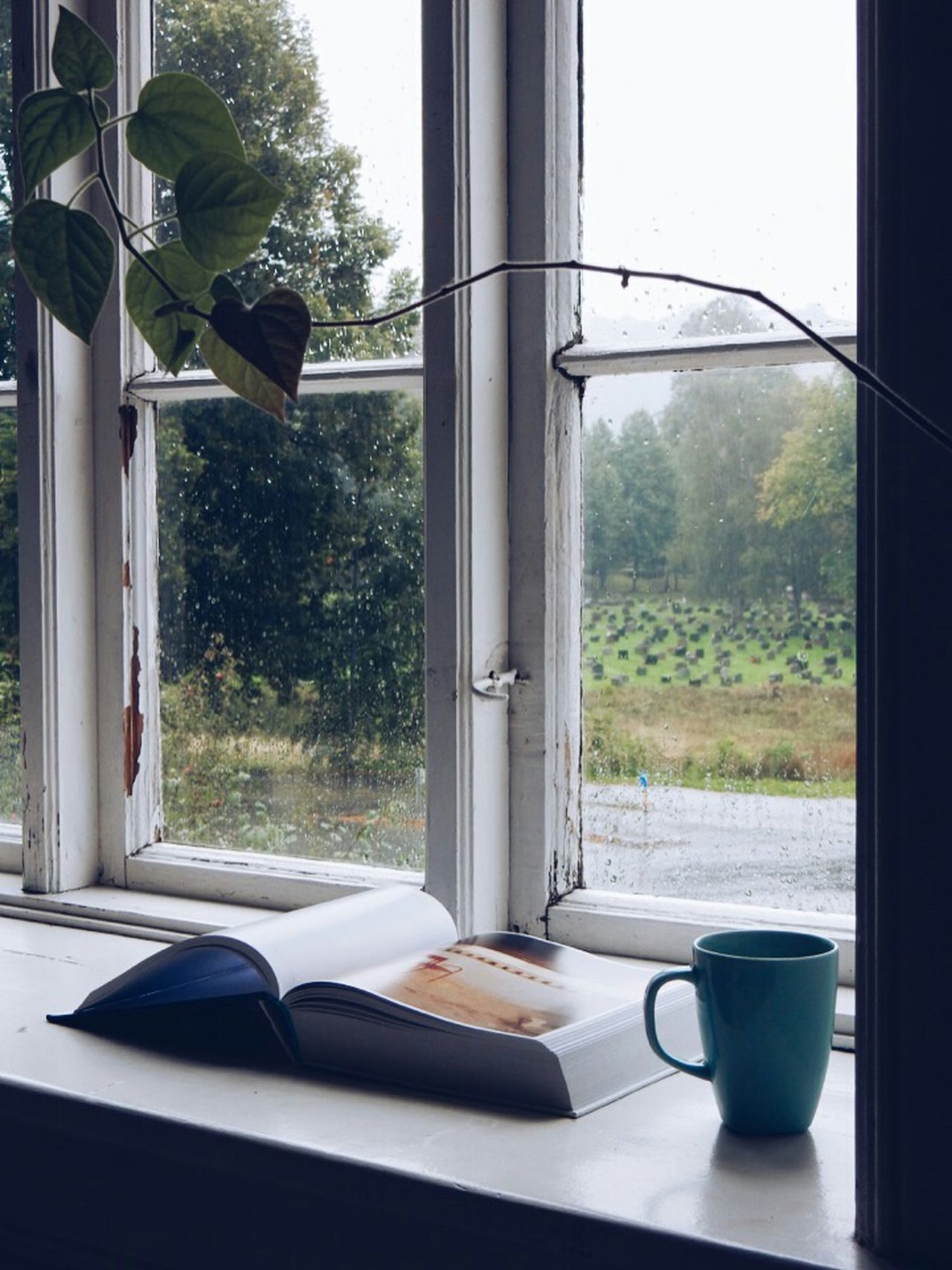 Coffee At Home Windowsill Coffee Coffee Break Rain Raindrops Reading Book The View From My Window Melancolic Windowsills Good Morning Coffeetime Books Morning Rituals Morning Coffeelover Coffee Cup Coffeebreak Coffeeaddict Stairsandsteps Reading Books Reading & Relaxing Books ♥ Read