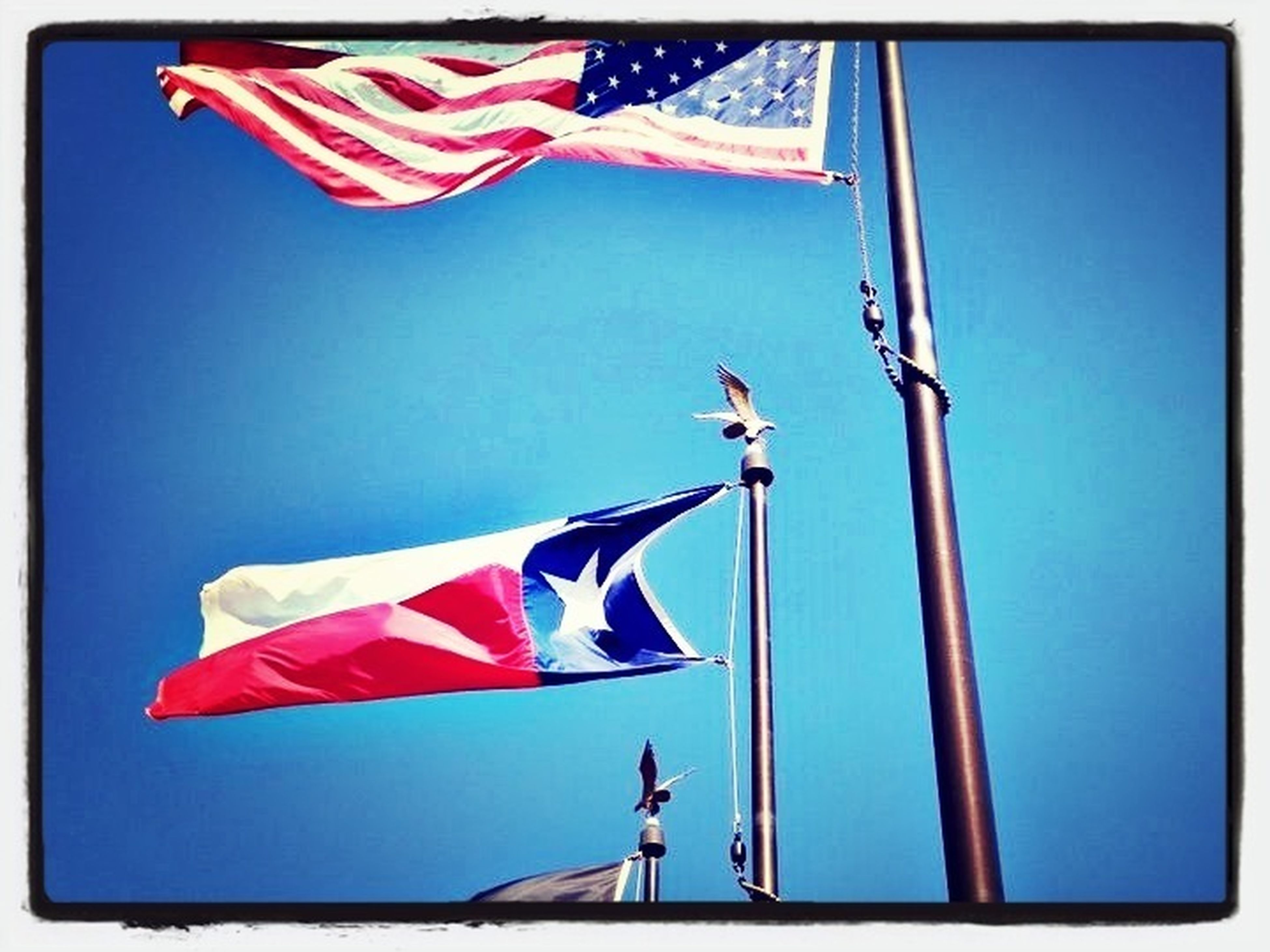 patriotism, flag, identity, national flag, american flag, low angle view, clear sky, wind, culture, blue, star shape, striped, pride, red, transfer print, day, hanging, waving, sky, sunlight