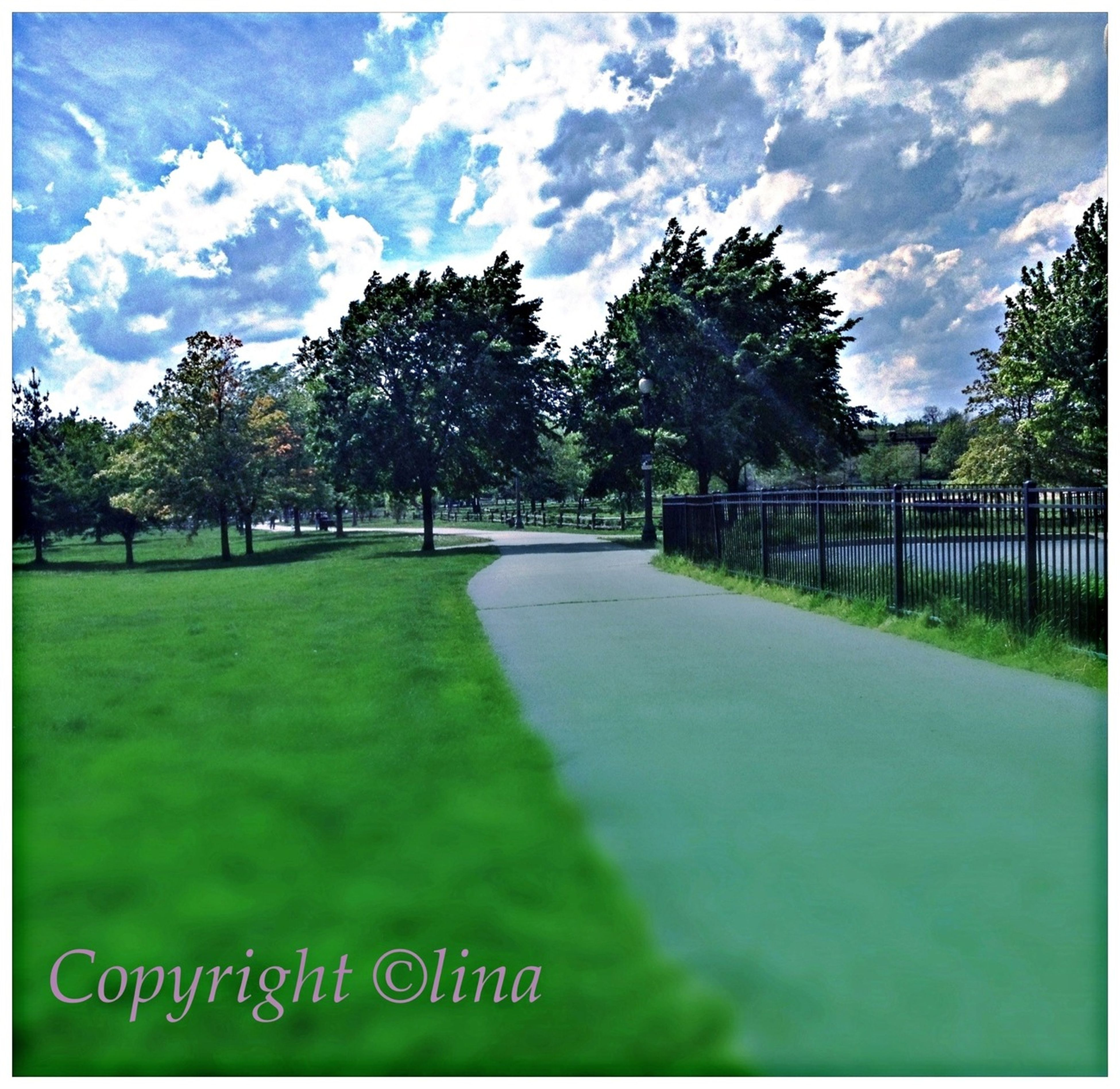tree, transfer print, sky, grass, the way forward, diminishing perspective, auto post production filter, cloud - sky, tranquility, road, landscape, tranquil scene, vanishing point, field, green color, cloud, nature, transportation, growth, scenics