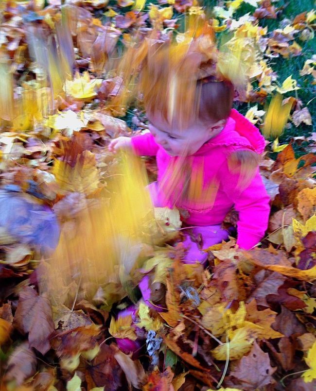 Original Experiences my niece and her first time playing in the leaves. At first, she did not like it, but after a bit she was having fun. Baby Girl Playing In The Leaves Play Happy Falling Leaves New England  Rhode Island North Kingston Sweet Joyful Happiness Simple Moment Enjoying Life Taking Photos Perfect