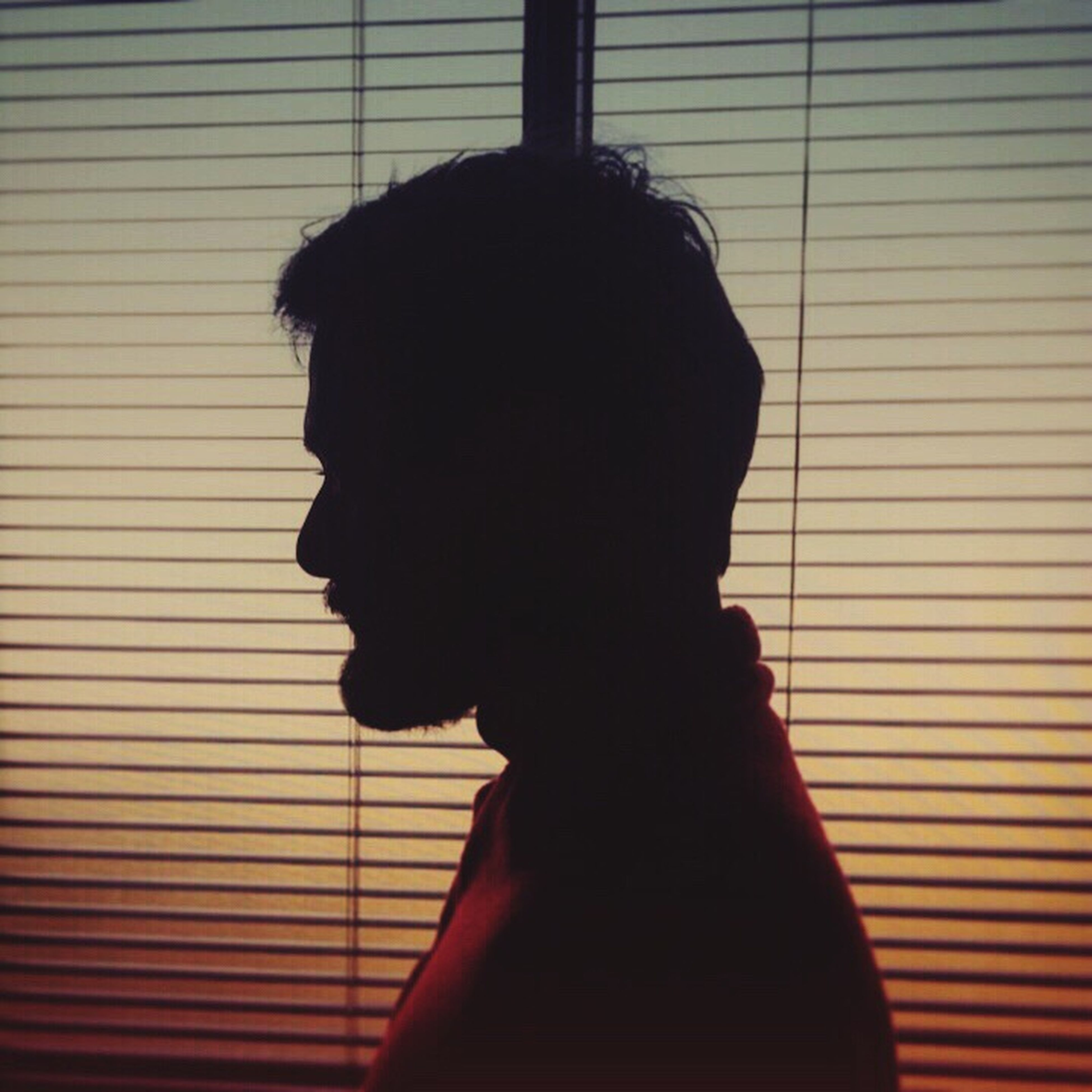 blinds, silhouette, one person, real people, indoors, window, side view, women, headshot, lifestyles, day, close-up, human hand, adult, people