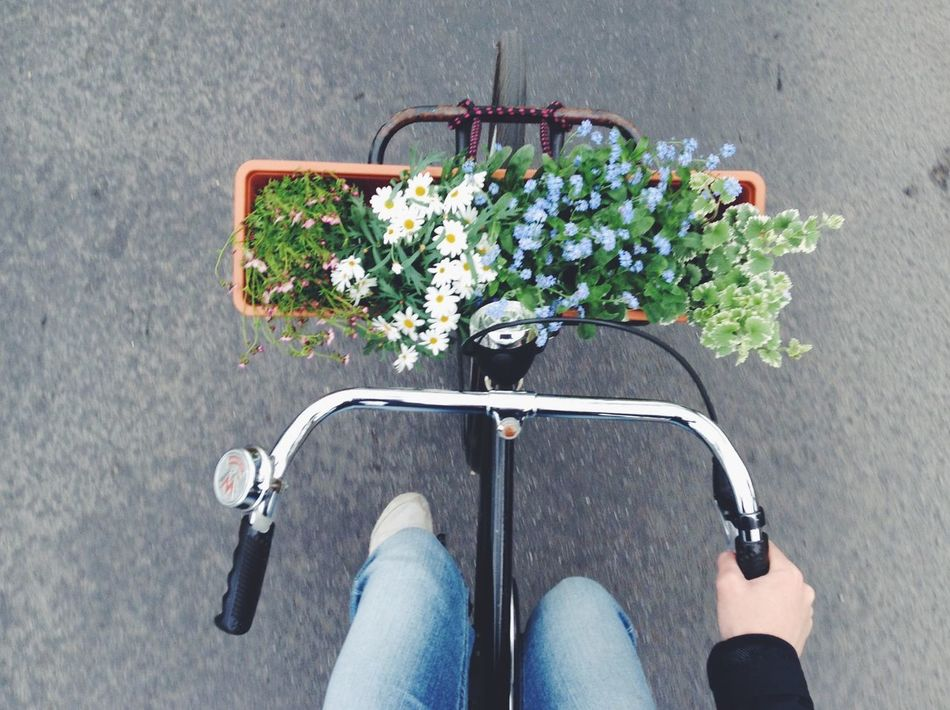 Beautiful stock photos of bike, Berlin, Bicycle, Bicycle Basket, Day