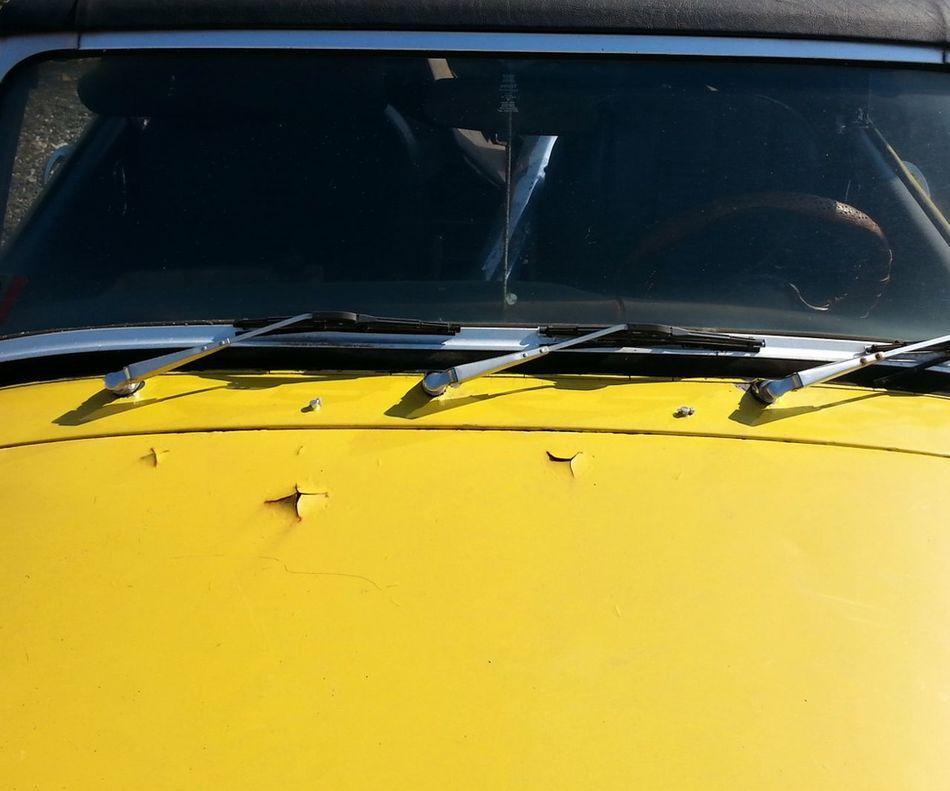 MG  Detail 3 Wipers Yellow Still Life Midget 1974 MG  Transportation