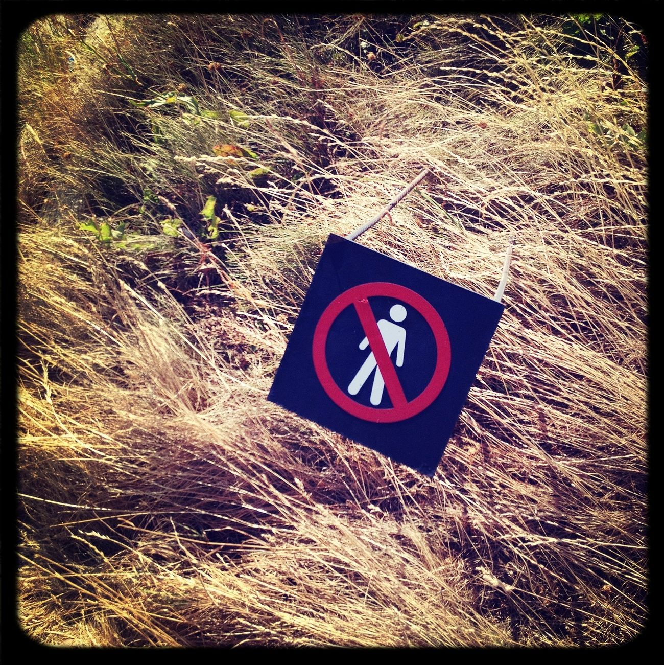 No humans allowed.
