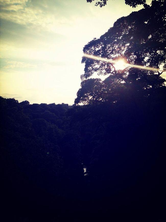 Enjoying The Sun Summer EyeEm Best Shots EyeEm Best Shots - Sunsets + Sunrise