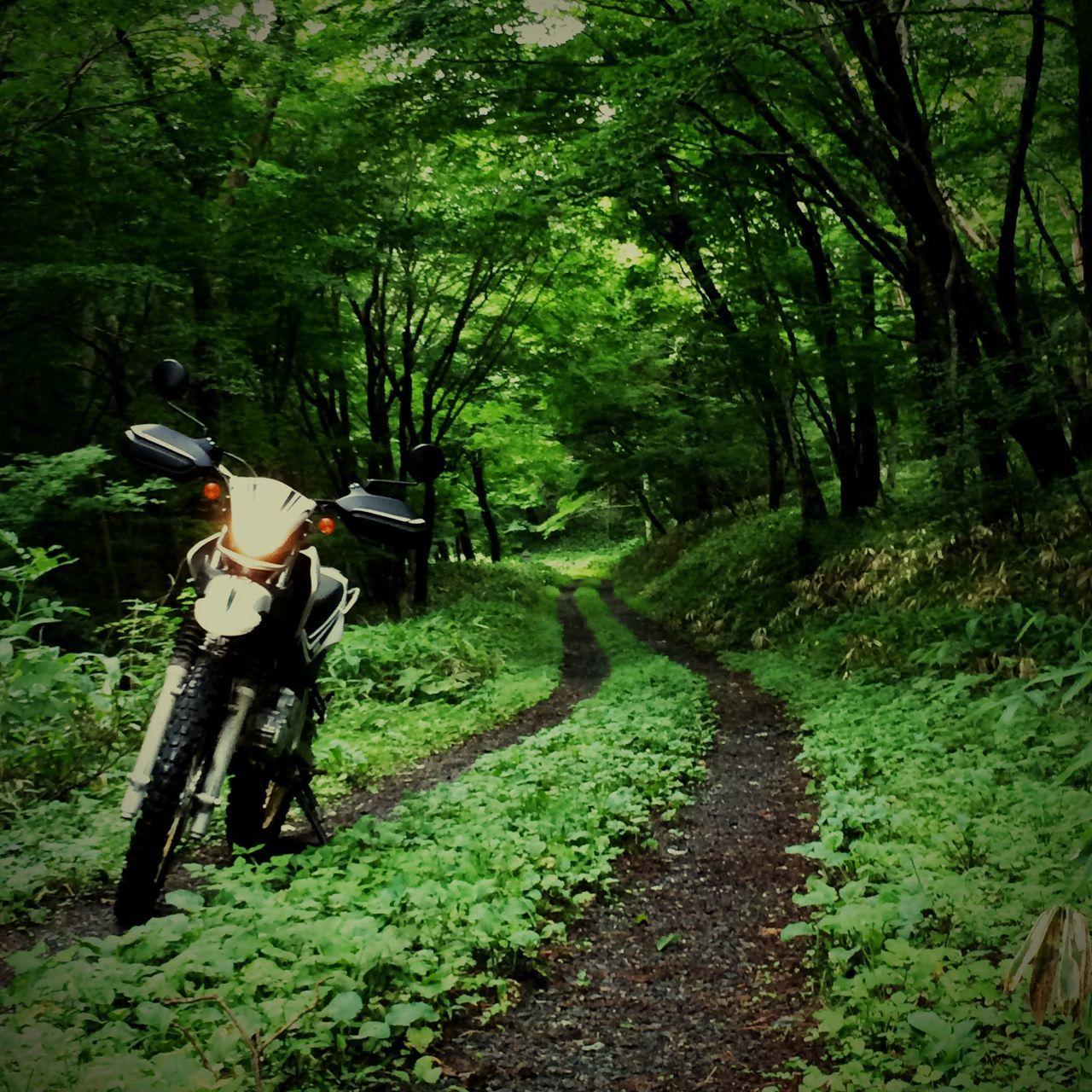 バイク ツーリング 林道 Motorcycles Trip Hello World