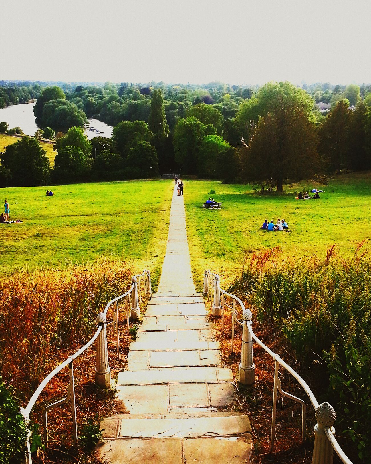 Cayır Meadow Merdiven Stairs Richmond PhotoByMuratGul
