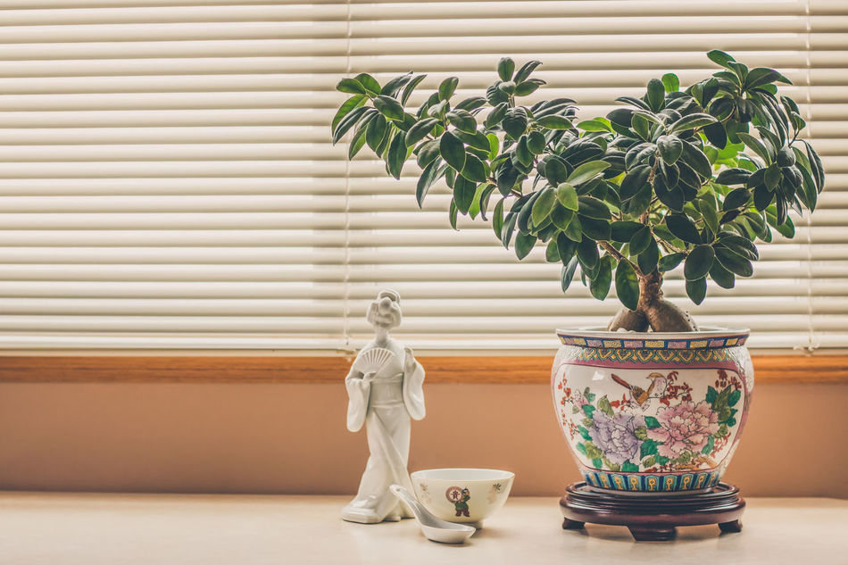 Arts Culture And Entertainment Asian  Asian Art Asian Culture Bowl Chinese Culture Chinese Figurine Chinese Porcelain Culture Day Display Figurine  Ginseng Home Decor Home Interior Natural Light Oriental Oriental Design Oriental Style Potted Plant Pottery Rice Bowl Still Life Photography The Week On EyeEm Window