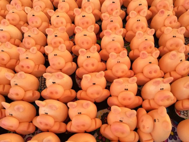 Sweets Pigs
