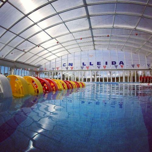 Swim CNLL Gopro Corchera Pool Swimming Swimmingpool Club Natació Lleida Instaphoto Photo Instamoment Agua Piscina Natacion  Instaday Instaphoto Enjoyswim Swim Gopro Goprohero Byhero 📷🌊💦
