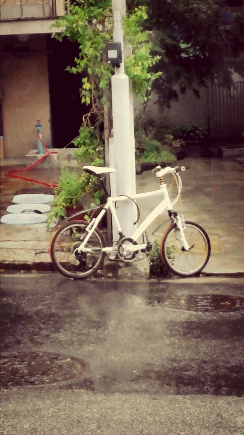 Hey, Bike ! A lonley Bycicle is Waiting for its owner in a Rainy Day...