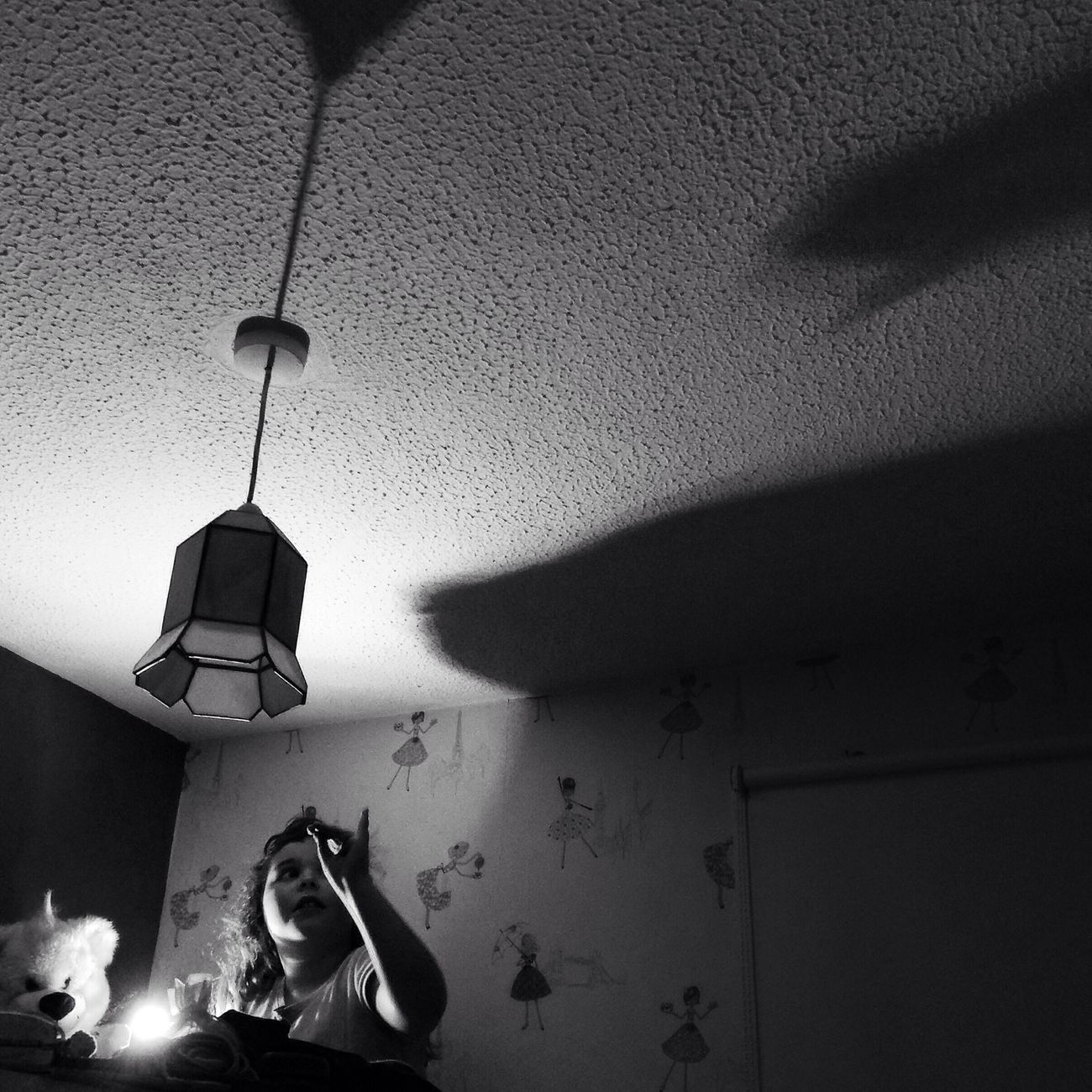 Everyday Lives shadow puppets