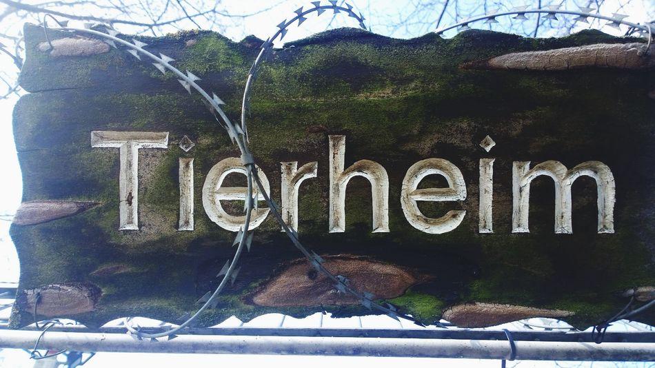Tierheim Sign