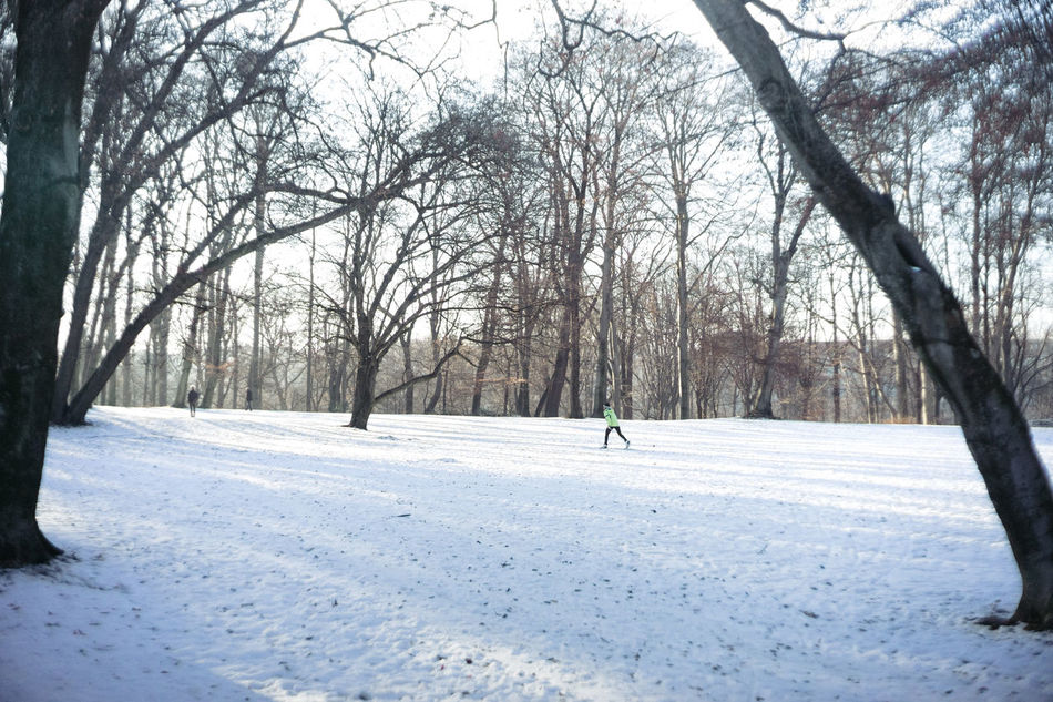 Weekend City - Park Runner Adult Adults Only Beauty In Nature Cold Temperature Cross City Skiin Cross Country Cross Country Skiing Day Langkawi Nature Only Men Outdoors People Snow Sport Tree Winter