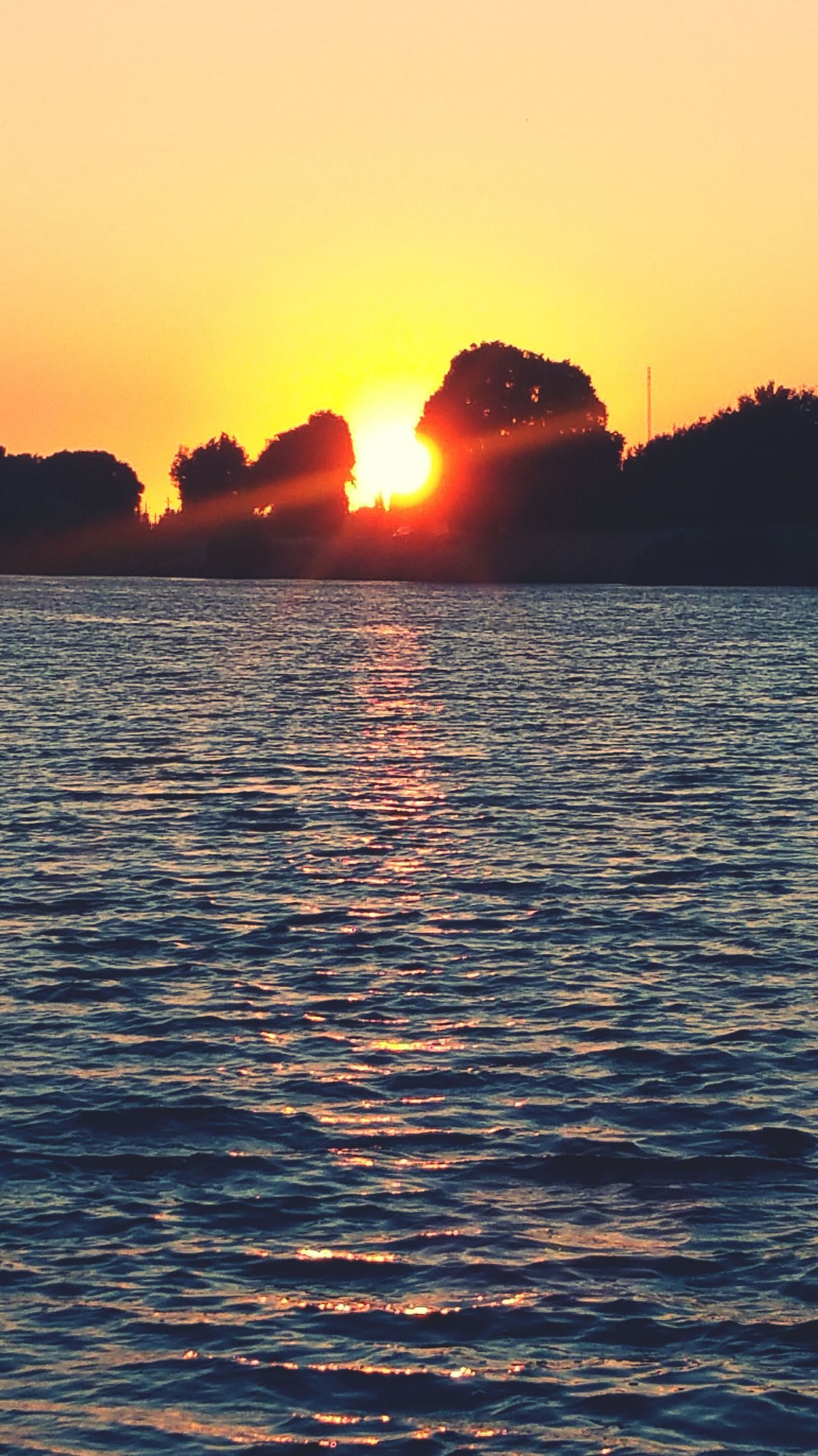 Sunset Water Sun Sea Beauty In Nature Vibrant Color Sacramento River Blessed  Nature Family Vacation Majestic Happy