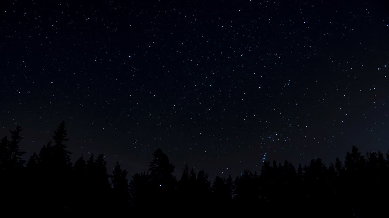 Star Star - Space Longexposure Nightphotography Night Lights Darkness Astronomy Beauty In Nature Star Field Space Space And Astronomy Silhouette Outdoors Galaxy Sky Night Scenics Nature Eyemmarket
