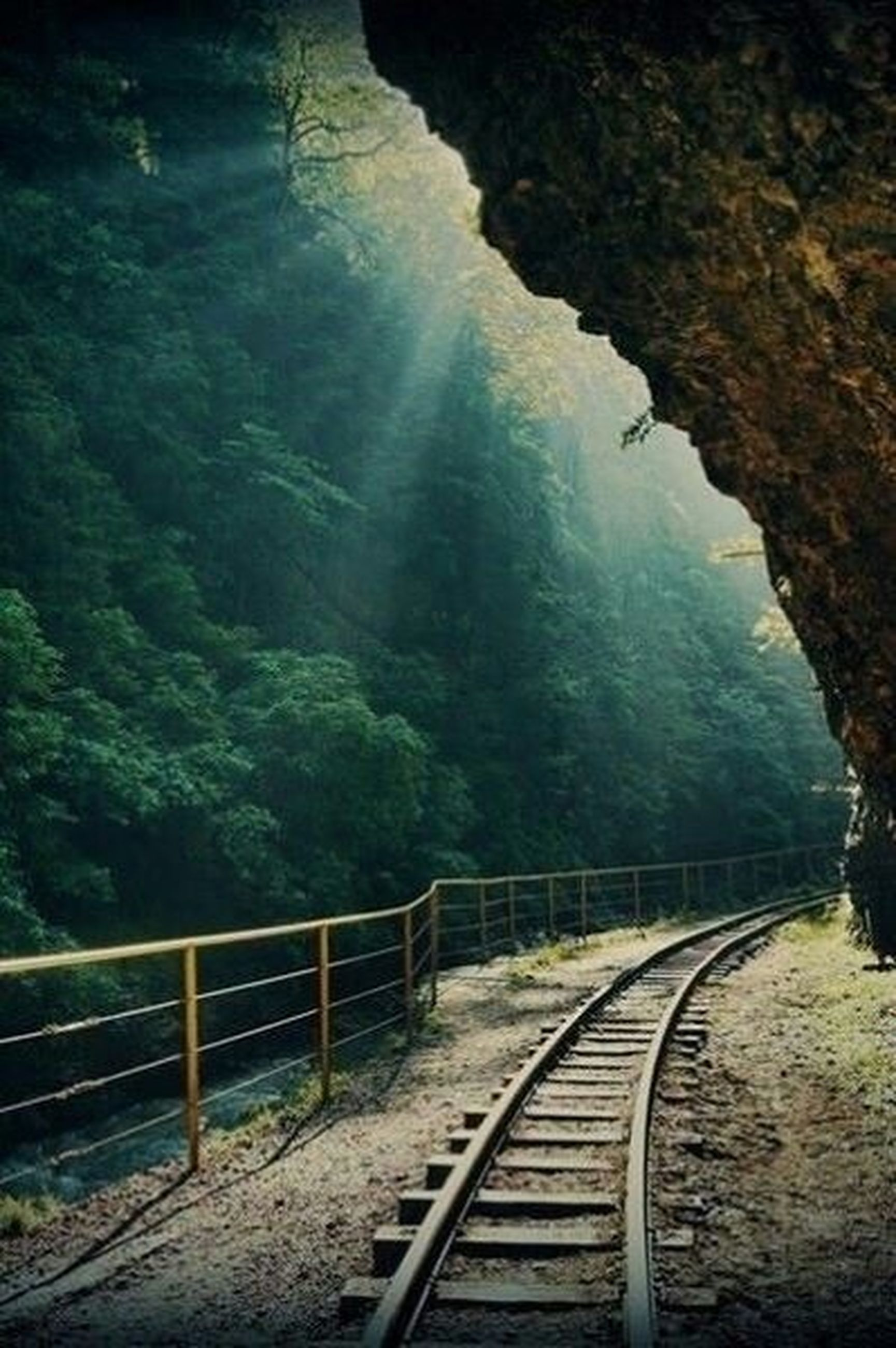 railroad track, the way forward, rail transportation, transportation, diminishing perspective, railing, vanishing point, tree, nature, public transportation, tunnel, day, rock - object, tranquility, railway track, mountain, no people, outdoors, sky, steps