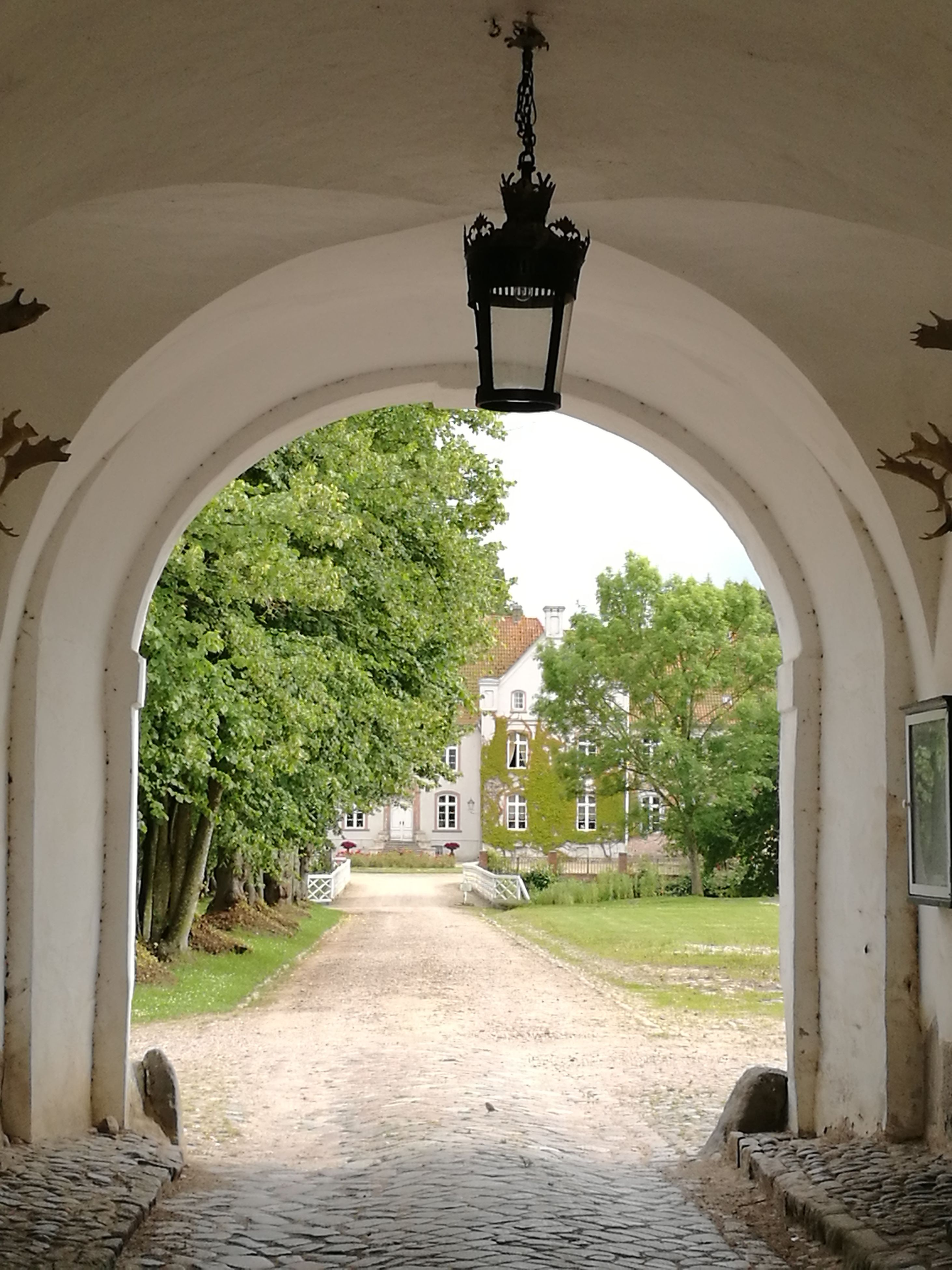 architecture, arch, the way forward, built structure, no people, day, nature, outdoors