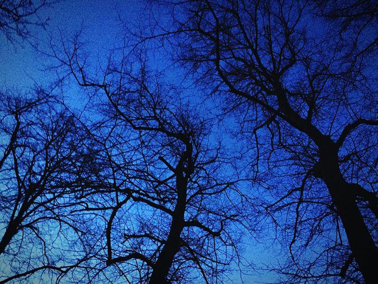 Learn & Shoot: After Dark The Week Of Eyeem EyeEm Nightphotography Night United Kingdom Showcase: February