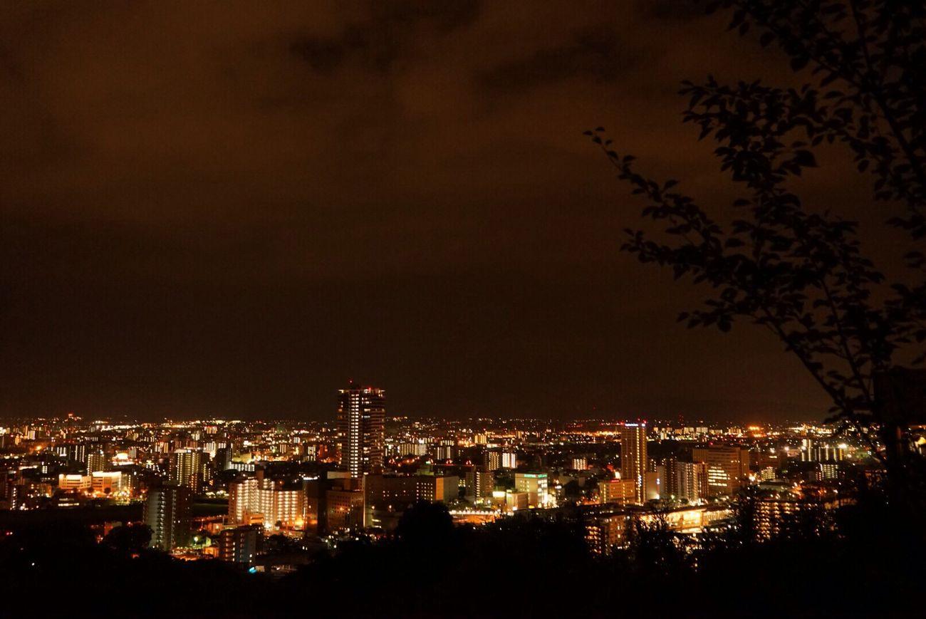 夜景 花岡山