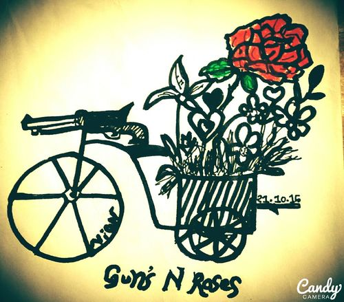 Guns N Roses....Gunsnroses Roselovers Epic Pics Life Cycle Cycles Baskets Flowers Meaningful Words