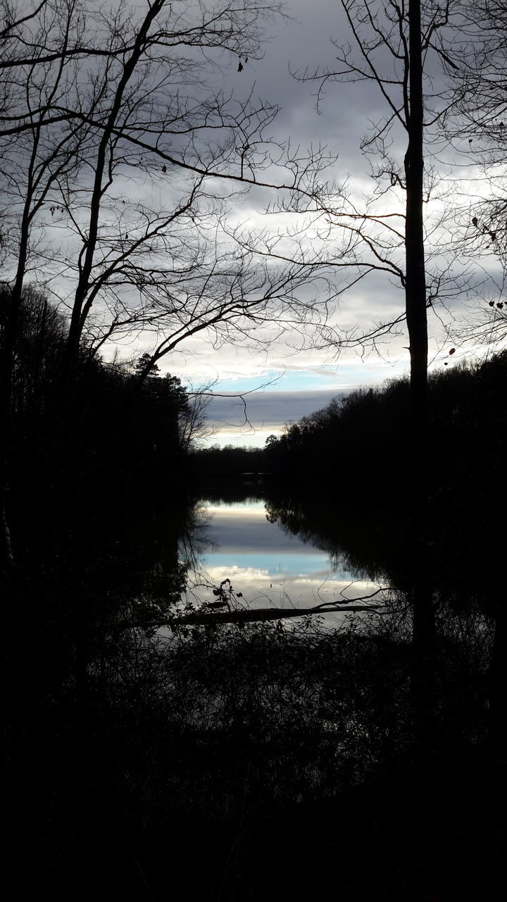 water, tree, lake, nature, tranquil scene, reflection, sky, beauty in nature, scenics, tranquility, no people, silhouette, outdoors, branch, day