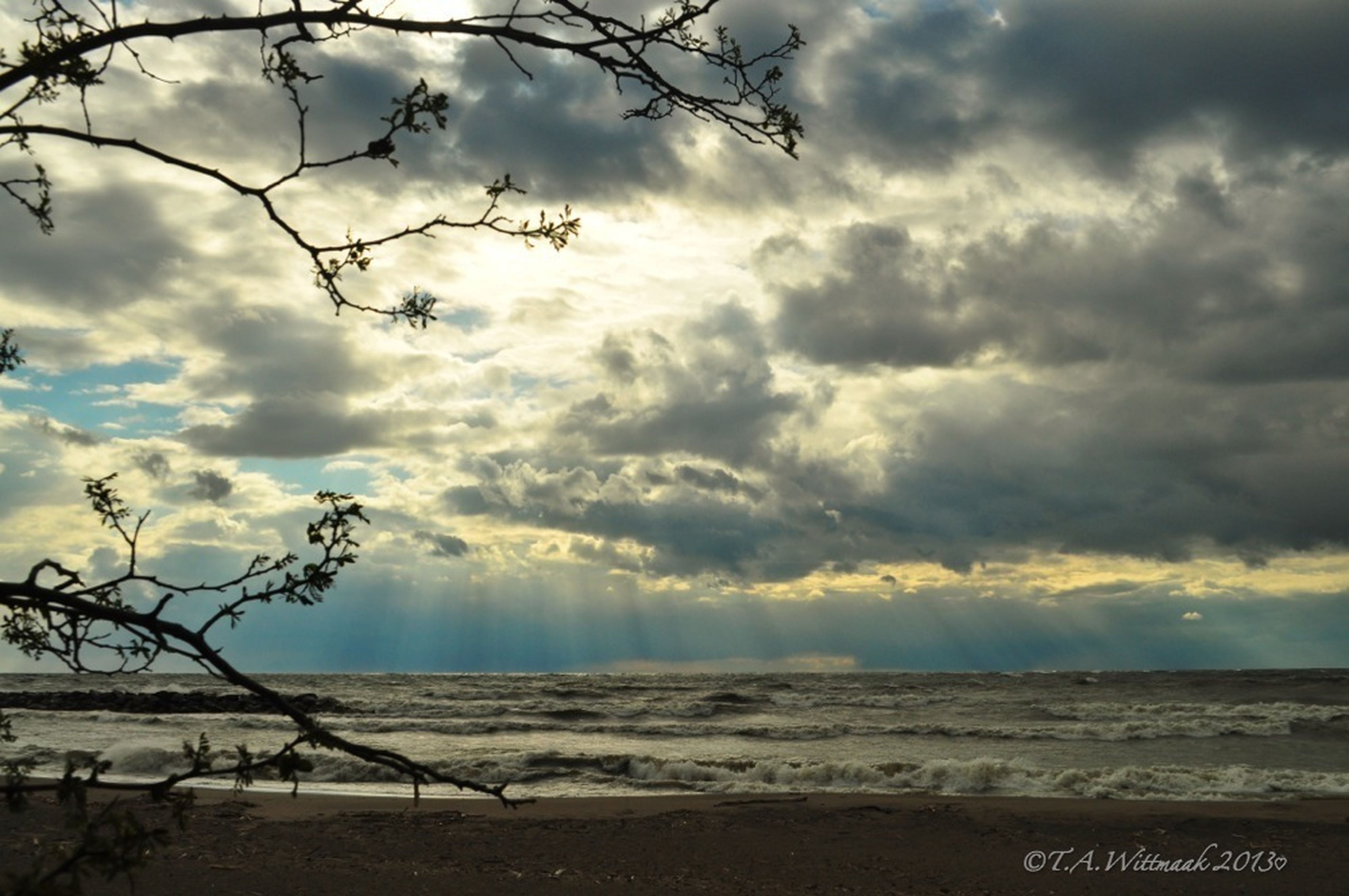 sky, cloud - sky, cloudy, tranquility, tranquil scene, scenics, weather, cloud, beauty in nature, nature, overcast, bare tree, landscape, tree, beach, dramatic sky, branch, sunset, storm cloud, idyllic