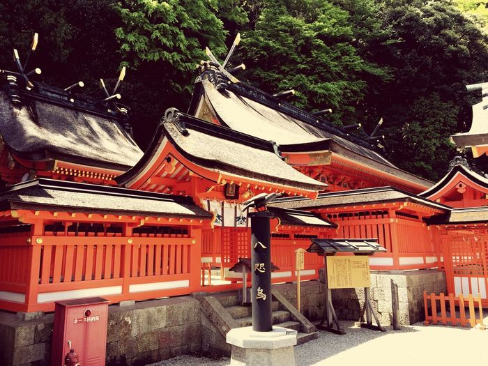 寺 Temple Temples Nachi Nachiwaterfall