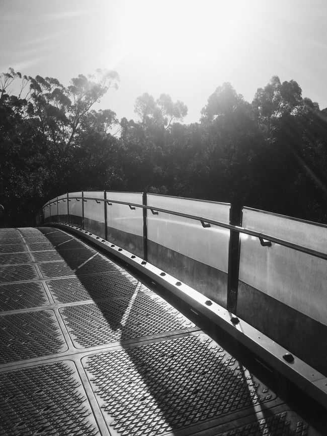 Hope you've all had a great start to 2015! Sometimes you get to a point where you realise perhaps it's where you're meant to be. Many thanks for your invitations Solunabee :) First Photo 2015 Monochrome_life Vscocam Perth Kings Park Holiday Memories Australia