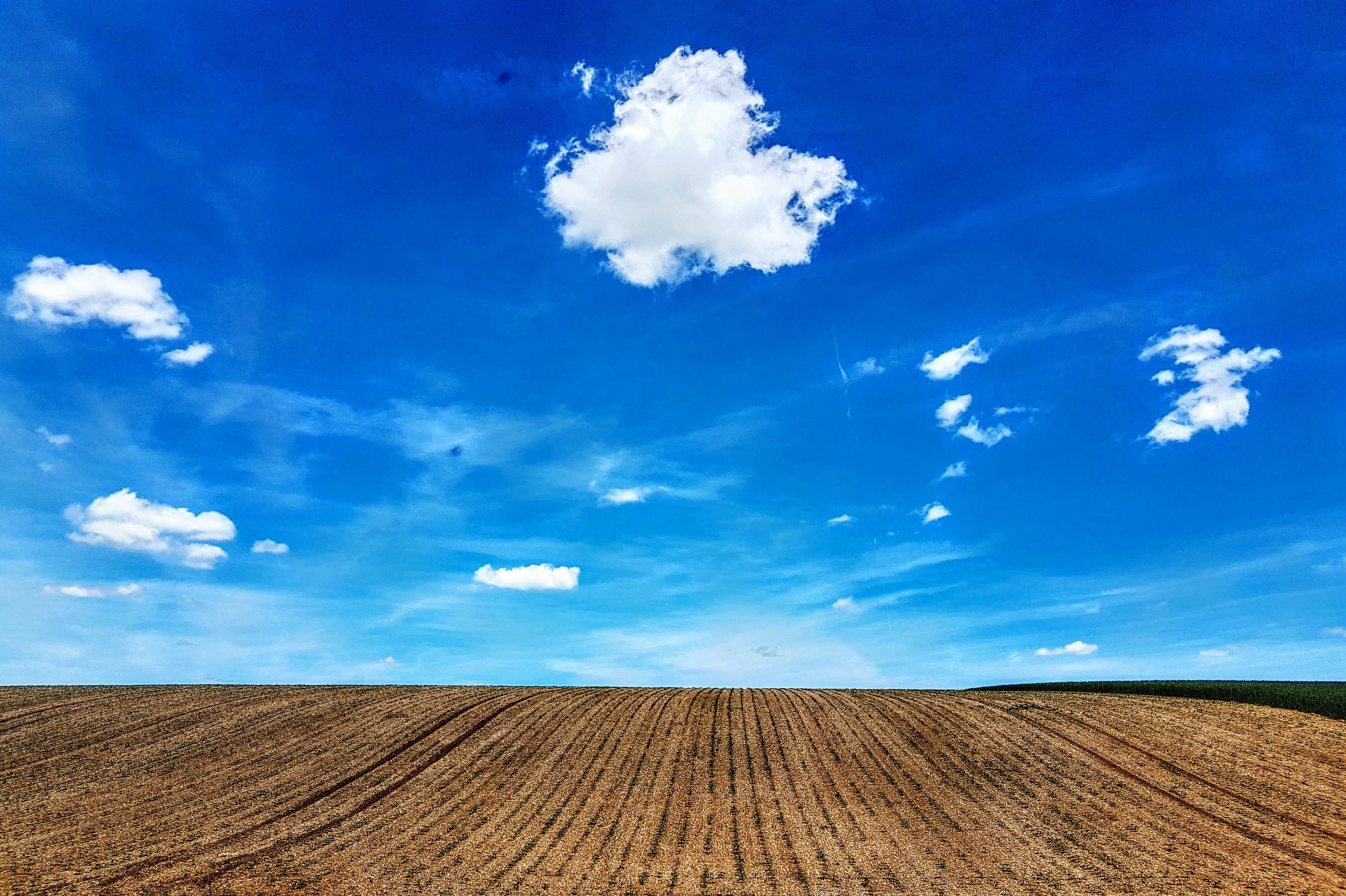 sky, field, landscape, cloud - sky, agriculture, nature, blue, scenics, rural scene, beauty in nature, tranquil scene, horizon over land, tranquility, day, outdoors, no people