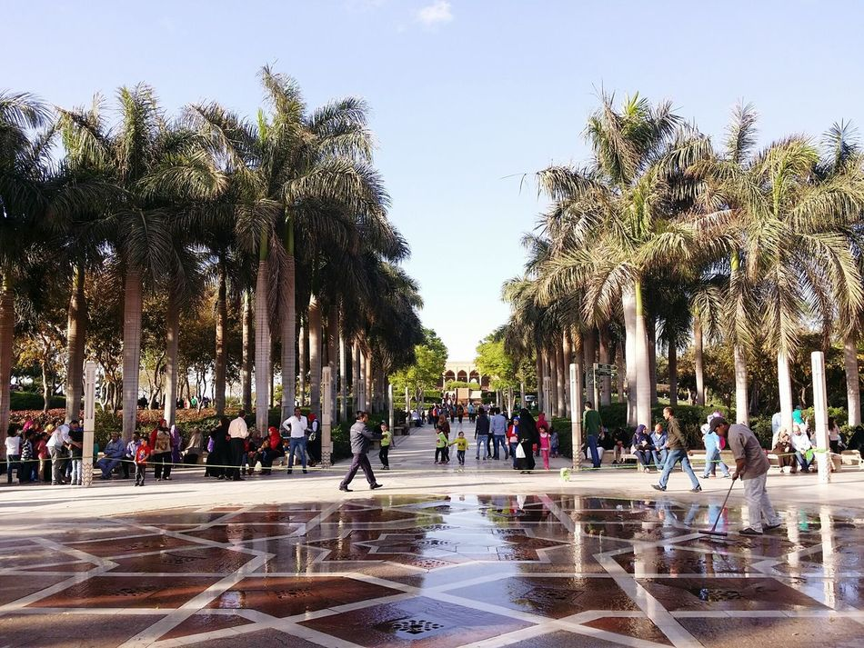 The Places I've Been Today Azhar_park Fountain Palm Trees Trees Cairo Egypt
