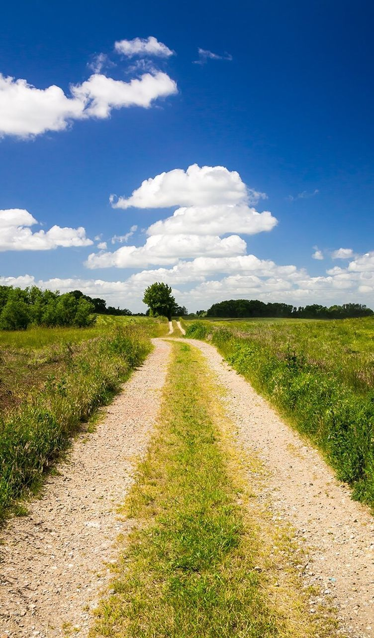 View Of Dirt Road Passing Through Grassy Field Against Blue Sky