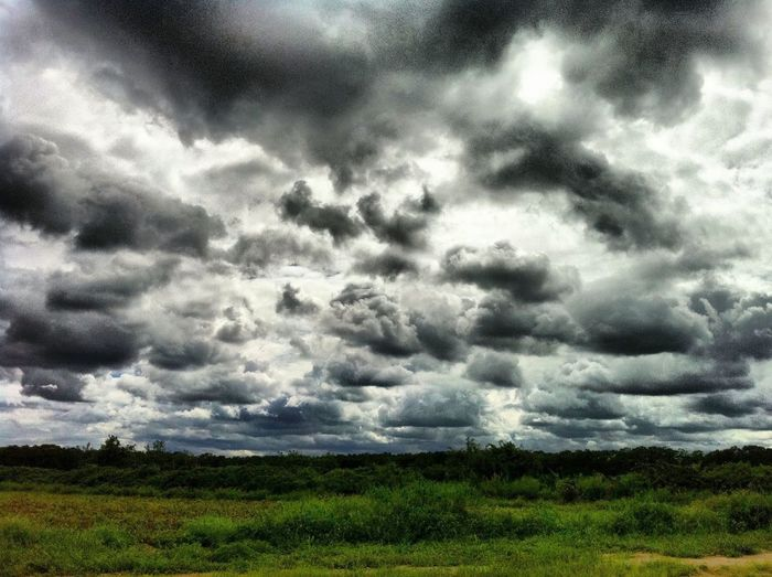 How I love clouds! at East Quogue How I Love Clouds!