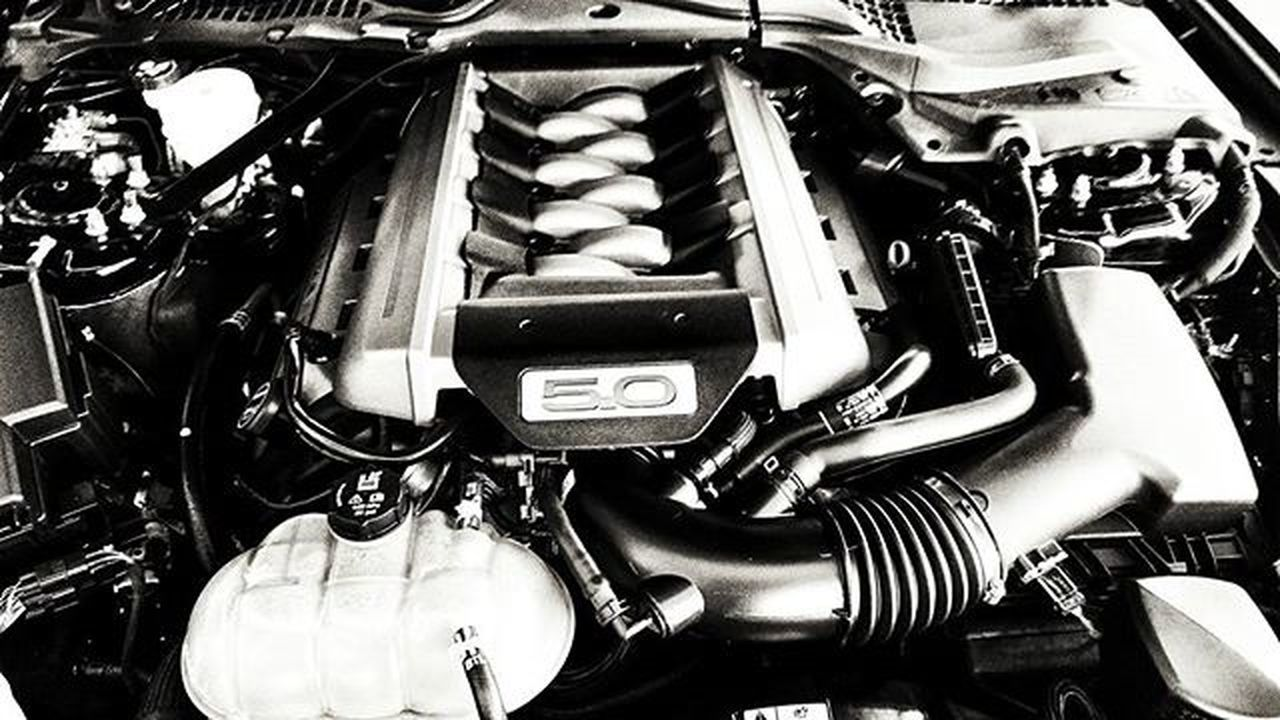 New mustang 5.0 V8. Ford Mustang Musclecar V8 Car Engine Bandw
