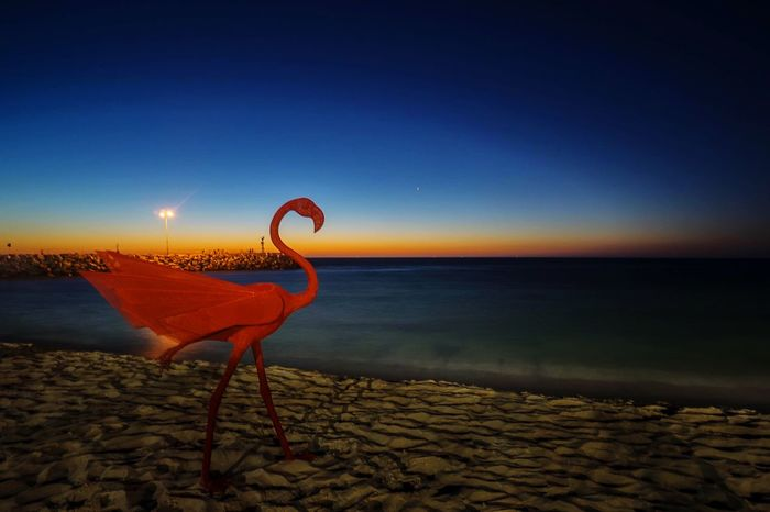 Cottlesloe Beach , Perth Australia during Sculpture By The Sea 2015