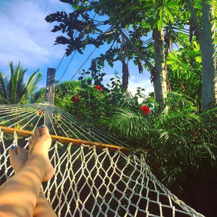 Hammock Hammocktime Luckywelivehawaii Livealoha Livingthedream Hawaiilife Islandlife Northshore808 Northshoreoahu Luckywelivehi Relaxation