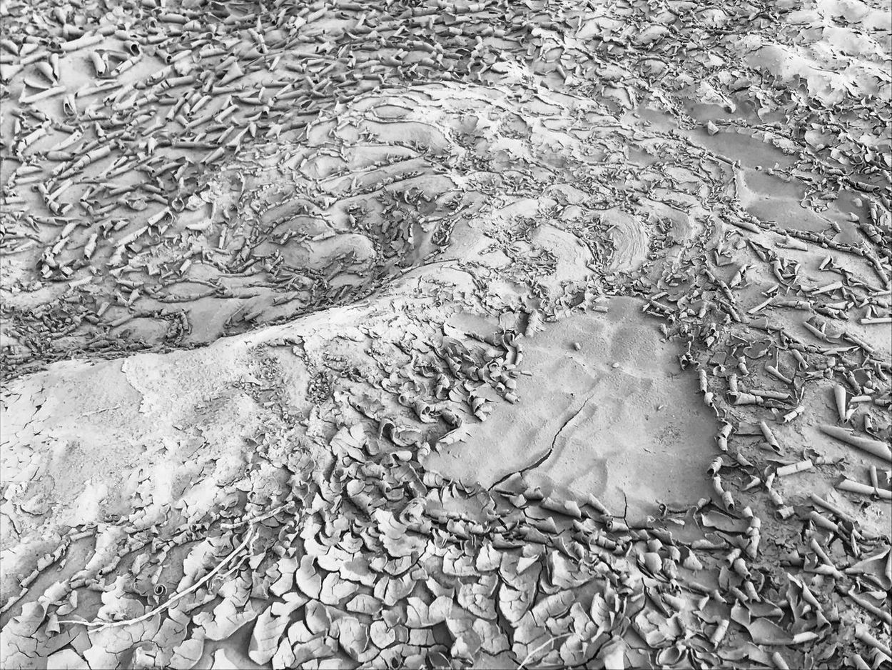 Nature Pattern Sand Outdoors High Angle View No People Close-up Beauty In Nature Day Backgrounds Patterns & Textures Texture In Nature Dry Mud Rippled Full Frame Black And White Photography Drying Up