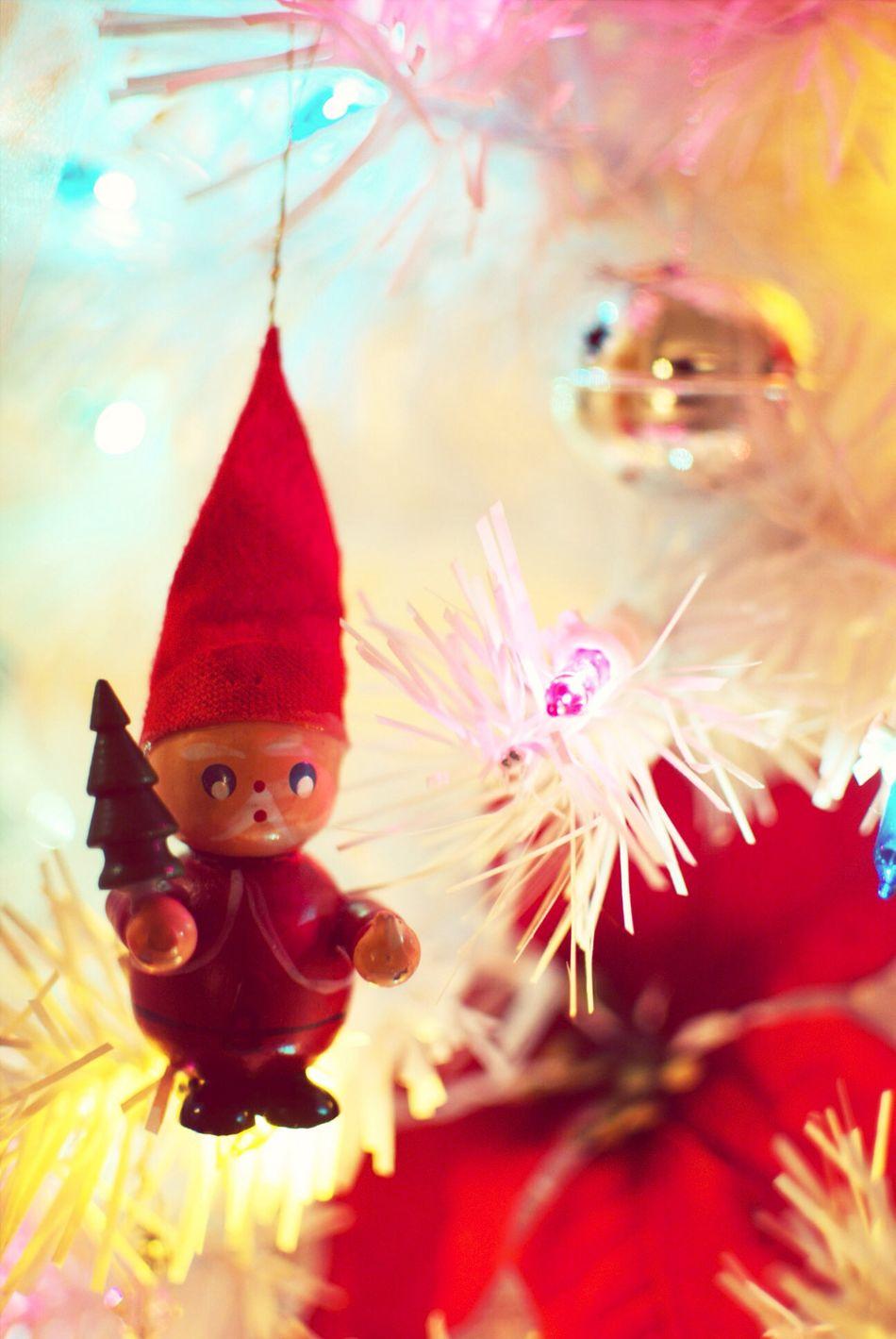 Christmas Tree Festive Season