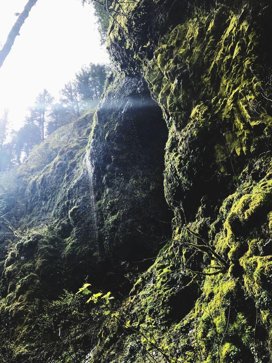 Multnomah Falls  Portland, OR