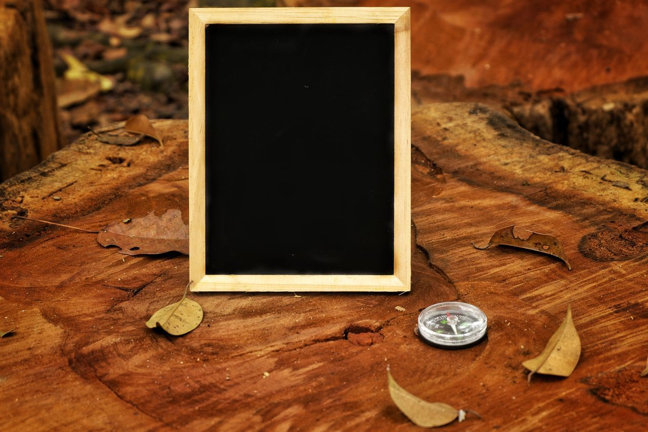 Blackboard and compass on wooden log Frame Photograph Wooden Log Wooden Adventure Outdoors Copy Space Compass Expedition Exploring Navigation Travel Direction Geography Latitude Path Navigate Hiking Trek Camping Directions North South Abstract Chalkboard