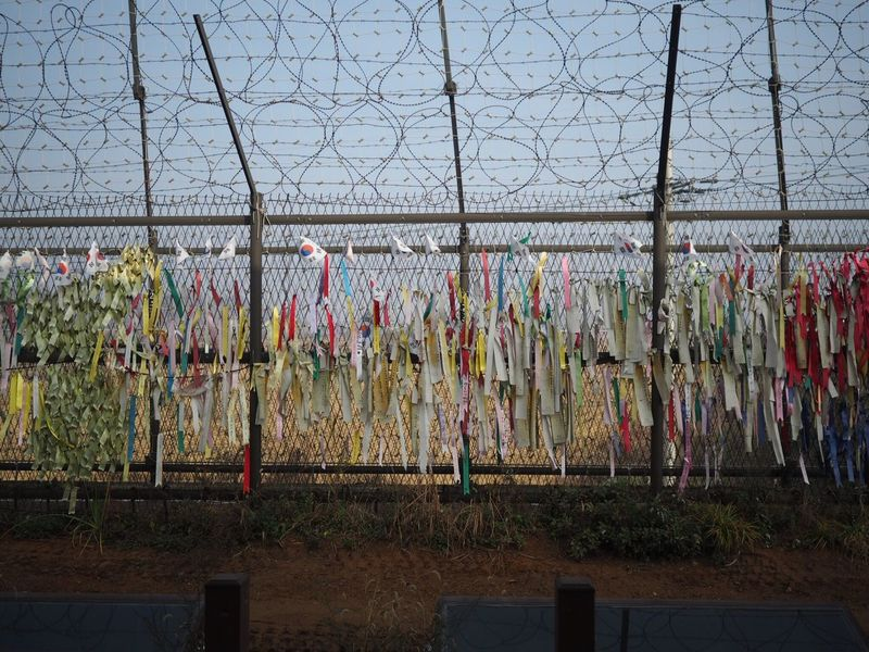 Korea War Wire Entanglement Dmz Hanging Multi Colored Paju Imjingak Mzuiko17mm Omdem5ii