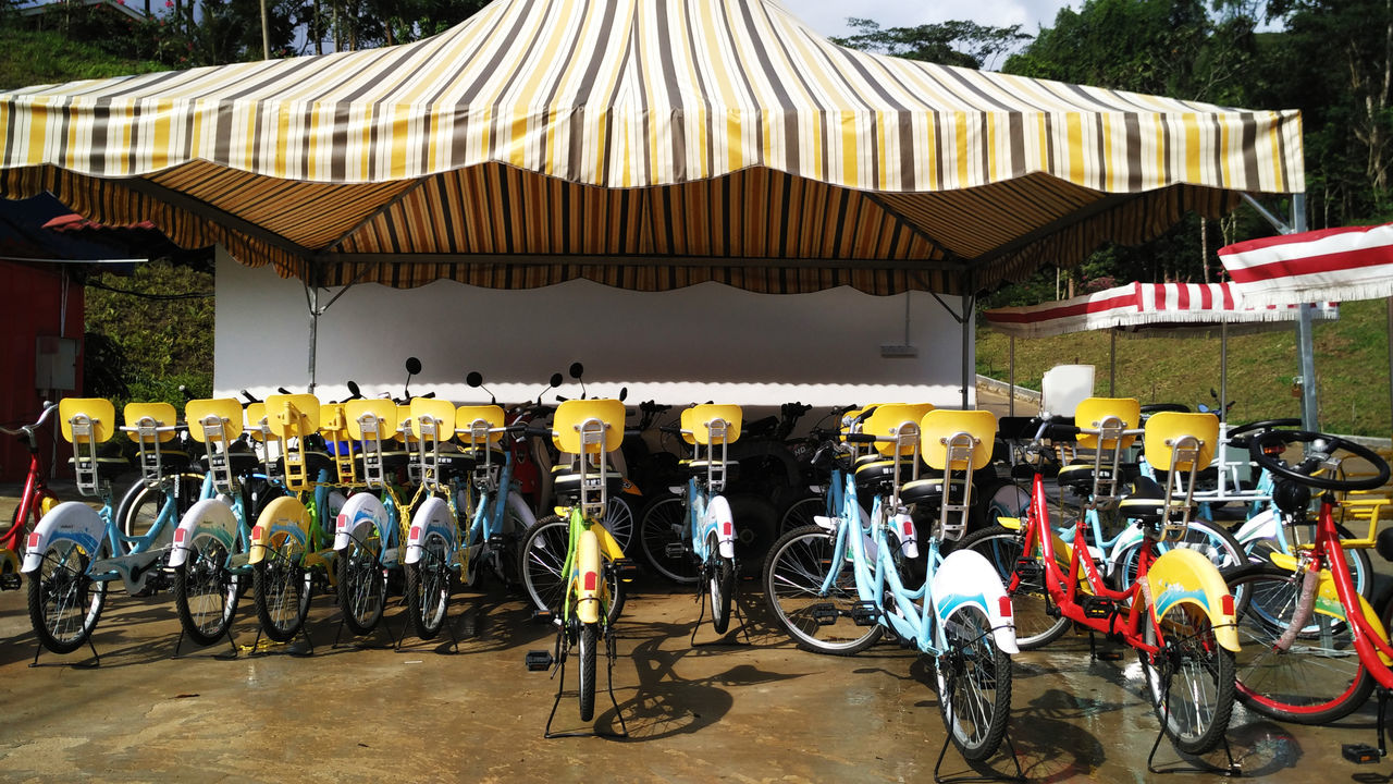 Arrangement Bicycle Bicycle Rental Bicycles Colourful Day In A Row Large Group Of Objects Mode Of Transport Multi Colored Outdoors Parked Parking Rental Side By Side Colour Of Life The Color Of Sport