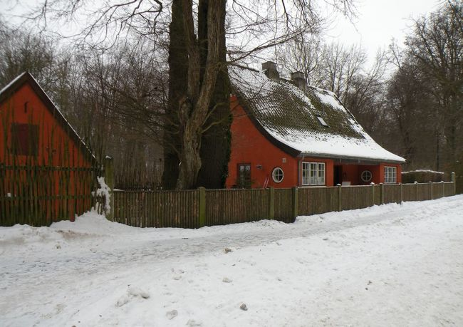 Tree Winter Snow Cold Temperature Built Structure Architecture House Building Exterior No People Day Nature Outdoors Sky Jægersborg Dyrehave Dyrehaven - in Jægersborg Deer Park in Klampenborg, Denmark