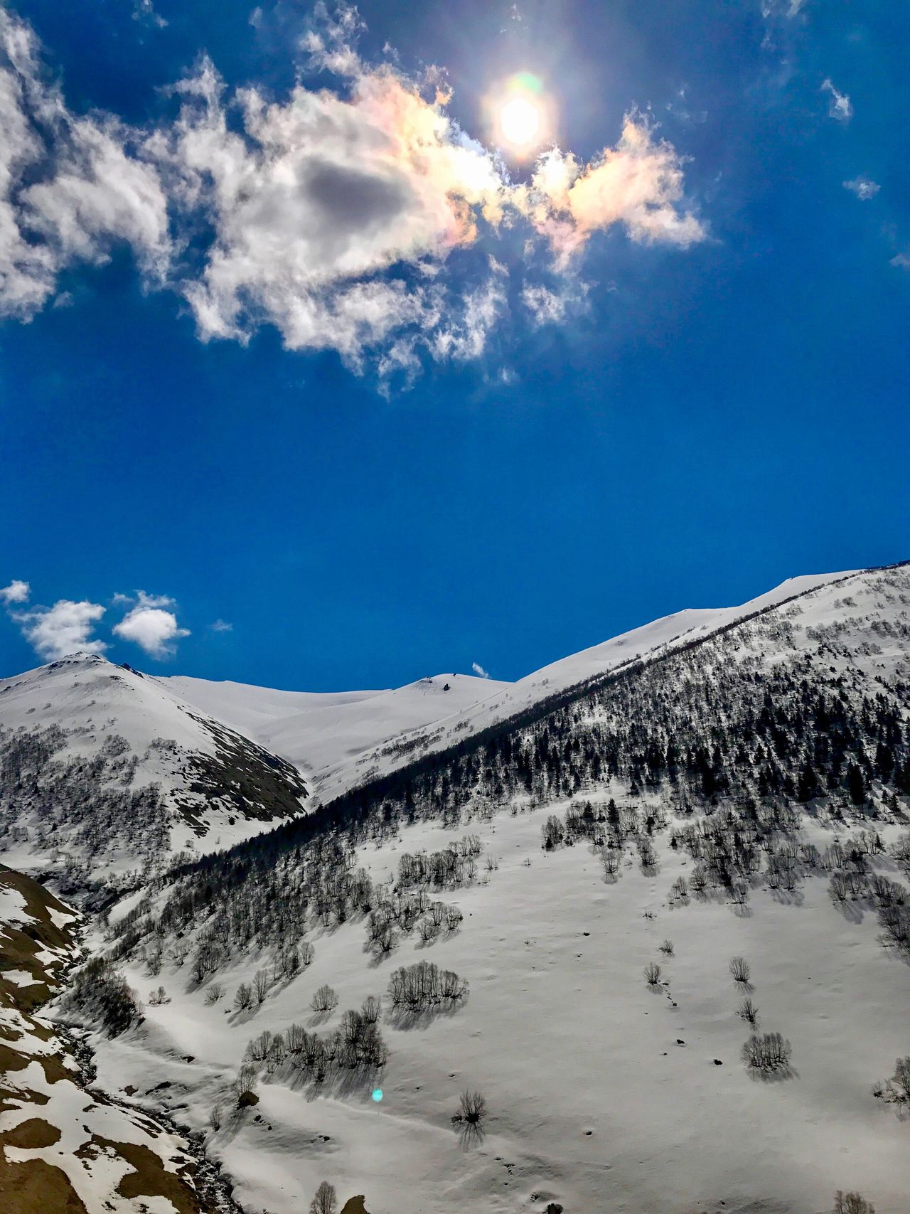 Snow Mountain Winter Cold Temperature Nature Sky Tranquility Beauty In Nature Tranquil Scene Cloud - Sky Outdoors Snowcapped Mountain Day Landscape Scenics Blue Sunlight No People Turkey Trabzon Uzungol Turkey Beauty In Nature Mountain Range Low Angle View